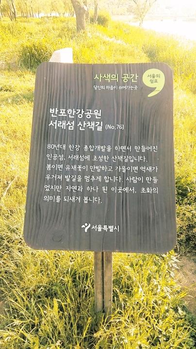 유채꽃밭 설명문
