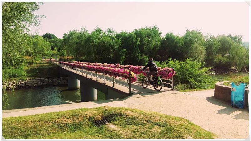 한강시민공원을 걷다보면 2
