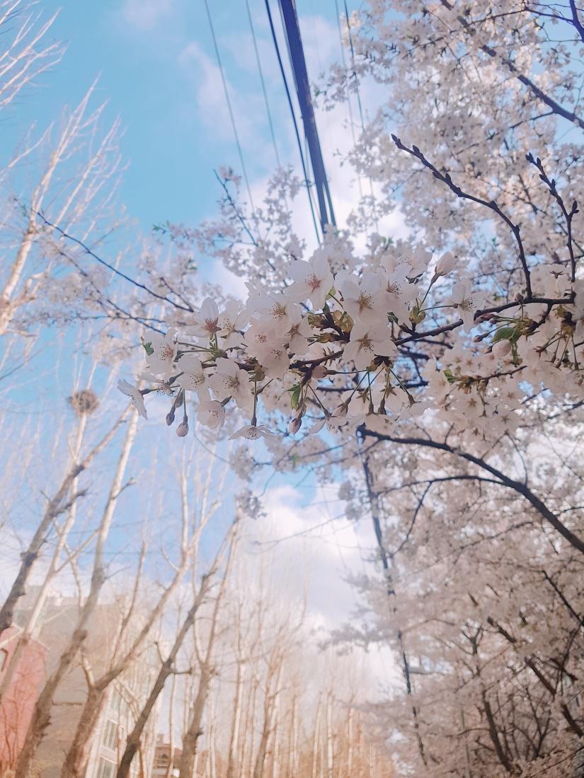 2018-04-04-16-01-35.jpg